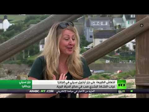 شاهد الوجه الآخر لـكورونا يُنعش الحياة الطبيعية في جزر إنجلترا
