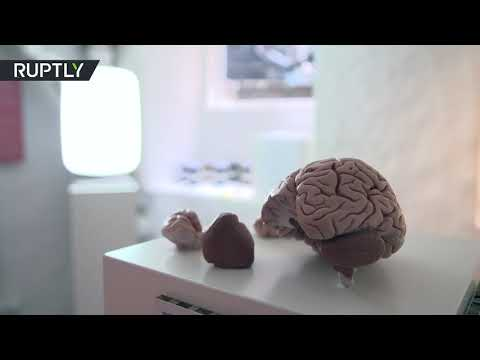 افتتاح متحف دولي لـالسعادة في العاصمة الدنماركية كوبنهاغن