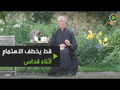 شاهد قط يخطف الاهتمام أثناء قداس