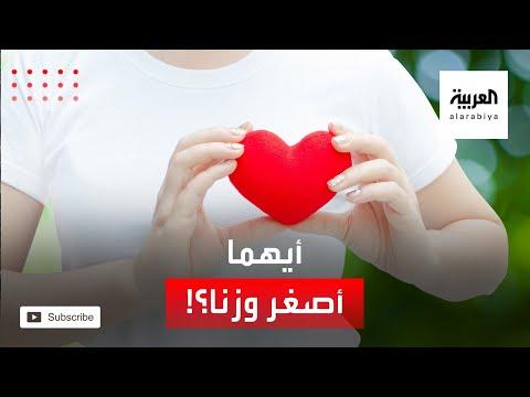 شاهد قلب المرأة أصغر وأخف وزنًا من قلب الرجل