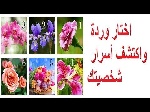 العرب اليوم - بالفيديو اكتشف أسرار شخصيتك من خلال وردة