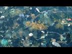 العرب اليوم - العثور على جزر من القمامة في خليج تايلاند