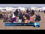 فلسطين اليوم - اعتماد خطة اصطياد العقرب لتحرير ما تبقى من الموصل