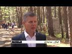 فلسطين اليوم - شاهد افتتاح حديقة للمنحوتات الخشبية في سيبيريا